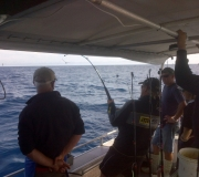 ITM-Boat Anglers